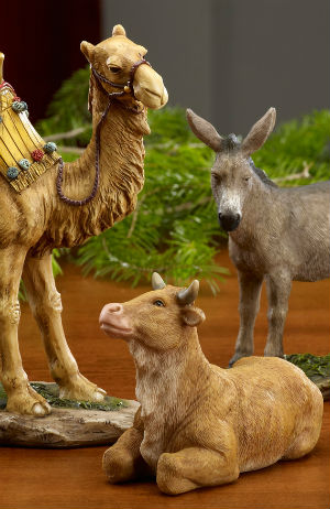 There Were No Animals At The Nativity Popes New Book