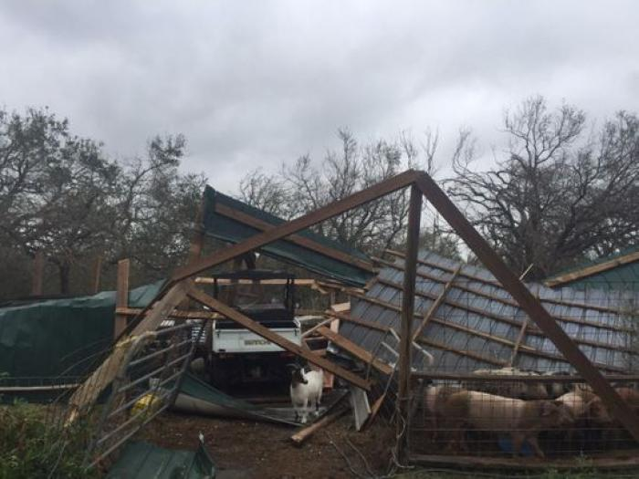 The Butts Family farm after Hurricane Harvey