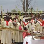 HOMILY/REFLECTION FOR PALM SUNDAY YEAR B (3)
