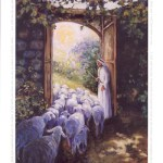 HOMILY FOR THE GOOD SHEPHERD SUNDAY YEAR B. (A DAY FOR VOCATIONS) (4)