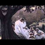 YEAR B: HOMILY FOR THE 6TH SUNDAY OF EASTER (7)