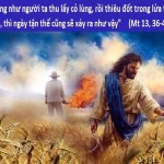 YEAR B: HOMILY FOR TUESDAY OF THE 17TH WEEK IN ORDINARY TIME (1)
