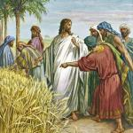 YEAR B: HOMILY FOR FRIDAY OF THE FIFTEENTH WEEK IN ORDINARY TIME  (1)