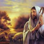 YEAR B: HOMILY/REFLECTION FOR THE SIXTEENTH SUNDAY IN ORDINARY TIME (5)