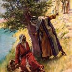 YEAR C: HOMILY FOR SATURDAY OF THE CHRISTMAS WEEKDAY (1)