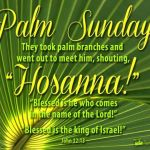 YEAR C: HOMILY FOR PASSION SUNDAY (7)