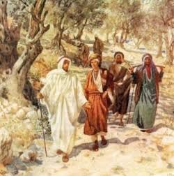 YEAR C: HOMILY/REFLECTION FOR THE 13TH SUNDAY IN ORDINARY TIME (5