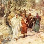 YEAR C: HOMILY/REFLECTION FOR THE 13TH SUNDAY IN ORDINARY TIME  (5)