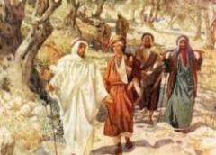 YEAR A: HOMILY FOR FRIDAY OF THE 15TH WEEK IN ORDINARY TIME (2)