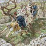 YEAR A: HOMILY FOR FRIDAY OF THE 23RD WEEK IN ORDINARY TIME (2)