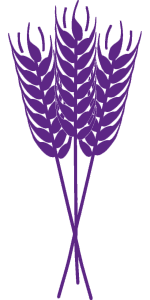 wheat-3611093_1280 purple