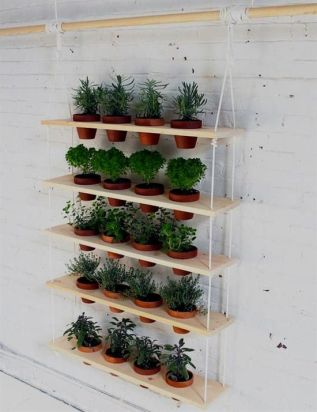 15 Fun and Easy Indoor Herb Garden Ideas _ Homesteading