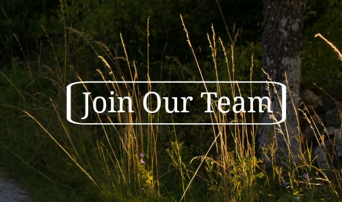 join-our-team Catholic mommy blogs