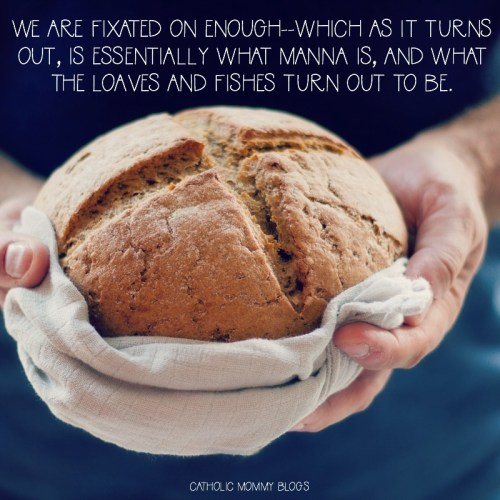 We are fixated on enough--which as it turns out, is essentially what manna is, and what the loaves and fishes turn out to be.