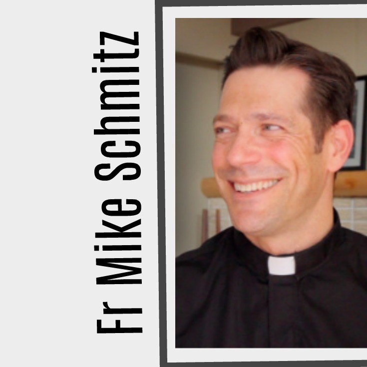 27 Most Popular Father Mike Schmitz Videos