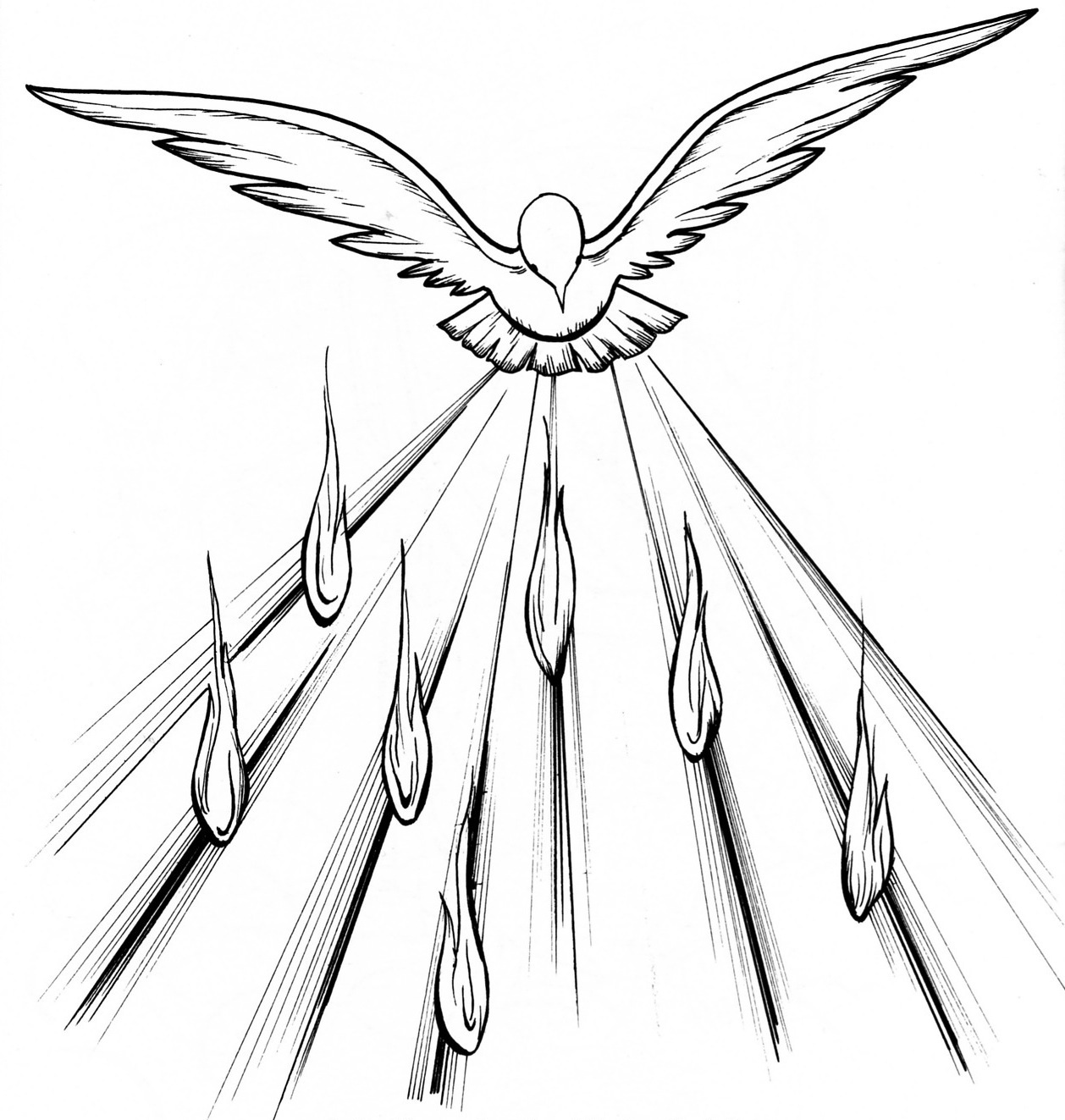 holy spirit fire dove clip art sketch page