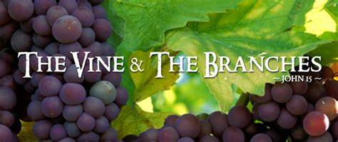 Parable of the Vine and Branches