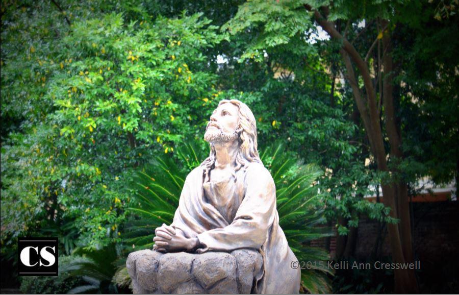 Kelli - prayerful jesus