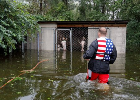 Dogs that were left caged by their owner, who fled rising floodwaters, are rescued in Leland, N.C., by volunteer Ryan Nichols of Longview, Texas, Sept. 17 following Hurricane Florence. The storm, now a tropical depression, is poised to affect more than 10 million the week of Sept. 17. (CNS photo/Jonathan Drake, Reuters)