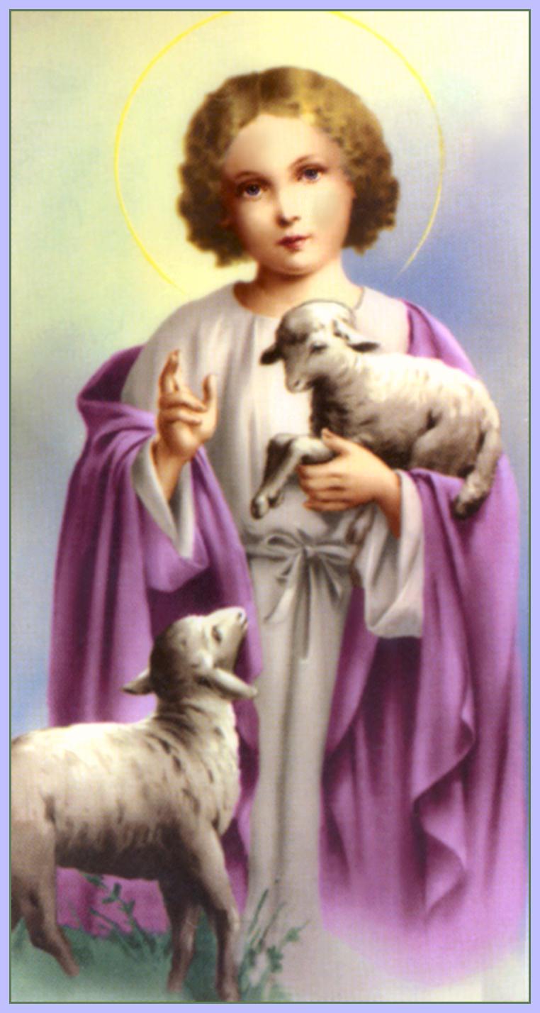 jesus christ with lamb christ child lamb of god