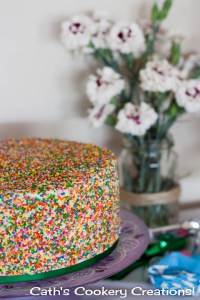 Gluten Free Vanilla Sprinkle Cake from Cath's Cookery Creations! | www.cathscookerycreations.com