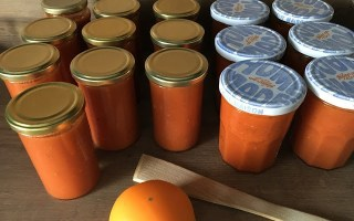 bocaux de coulis de tomate