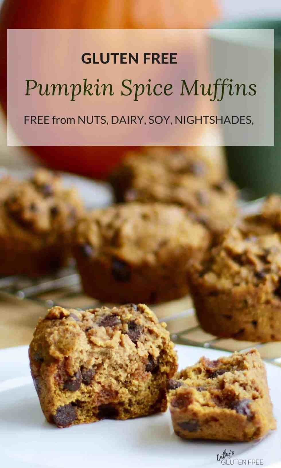 Gluten Free Pumpkin Spice Muffins | Free from nuts, soy, corn, nightshades CathysGlutenFree.com