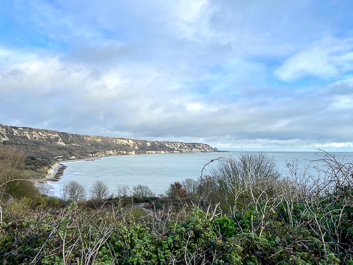 view of the Warren, Folkestone, with cliffs in the distance