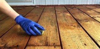 Cara Mencegah Jamur Perusak Kayu dengan Cat