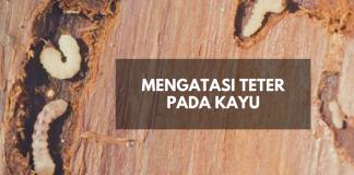 Tips Merawat Furniture Kayu Dari Teter