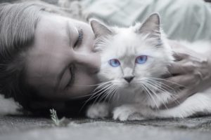 How Owning a Cat Can Benefit Your Health, Too
