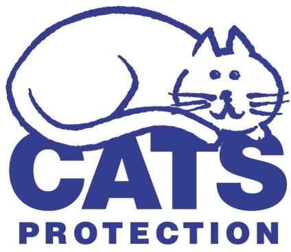 Help felines in need & Vote for Cats Protection in our charity poll