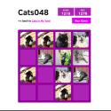 Cats048