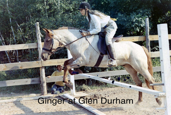 Ginger at Glen Durham