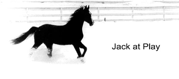 Jack at Play