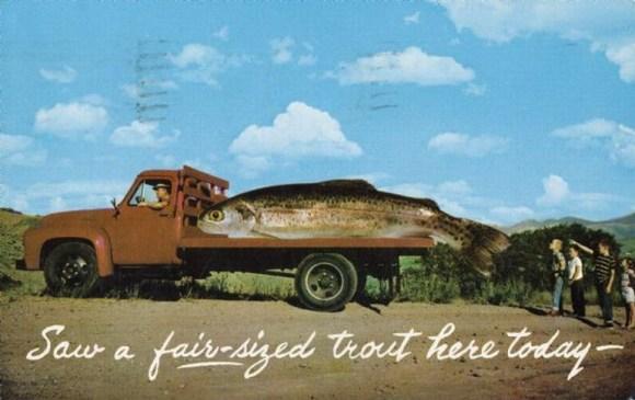 Postcard-fiction