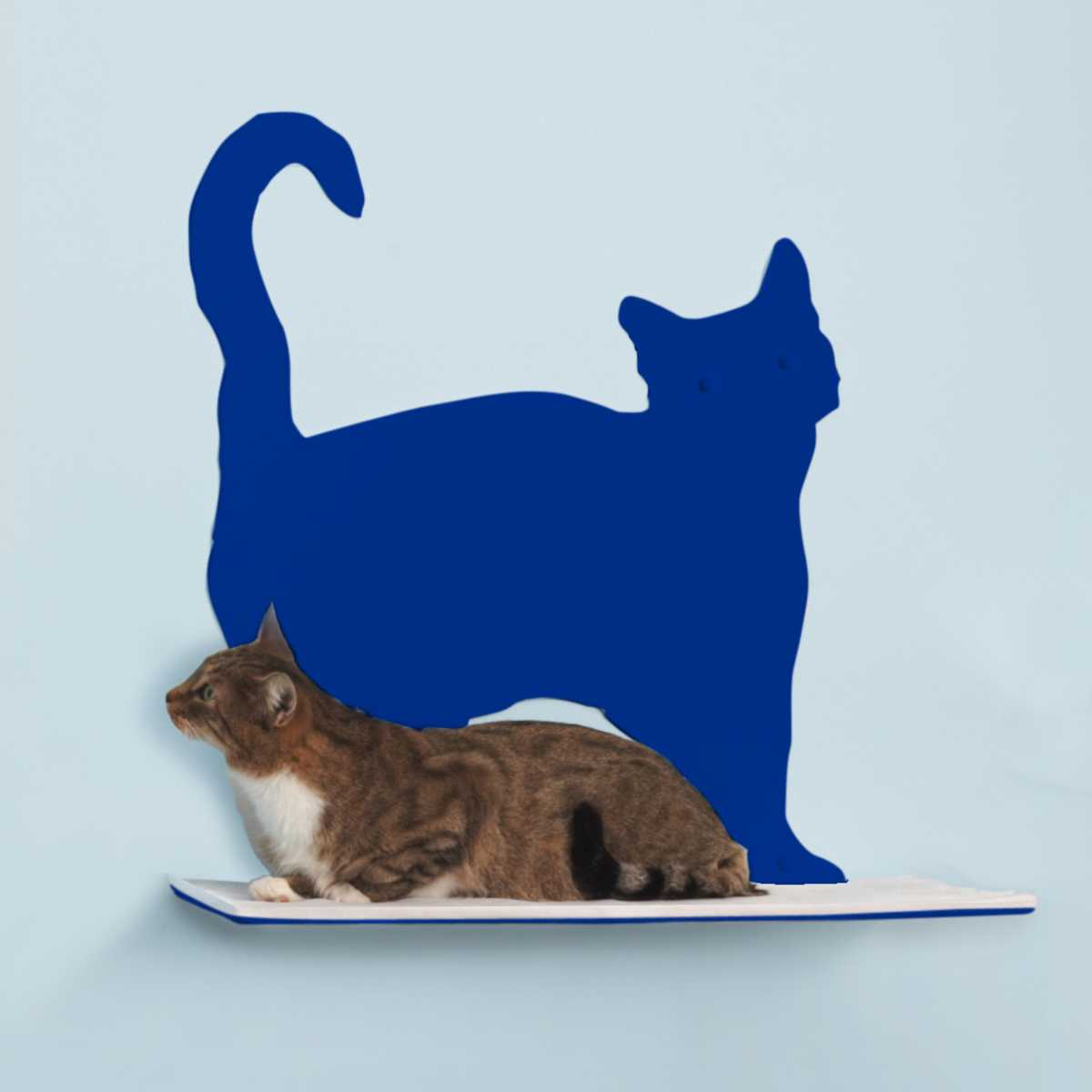 Cat Silhouette Cat Shelf Prance Catsplay Superstore