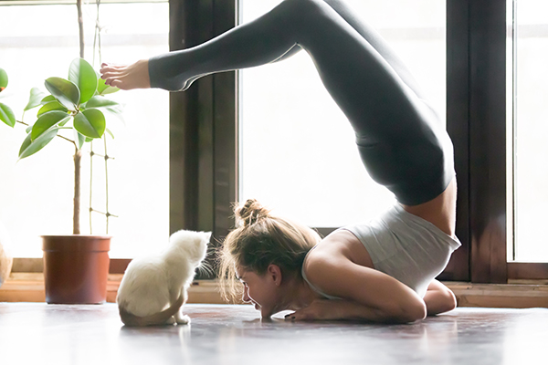 A woman working out with her cat.