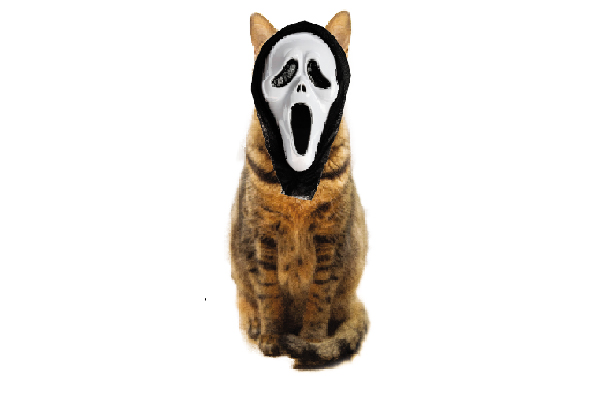 Cat in a Scream mask.