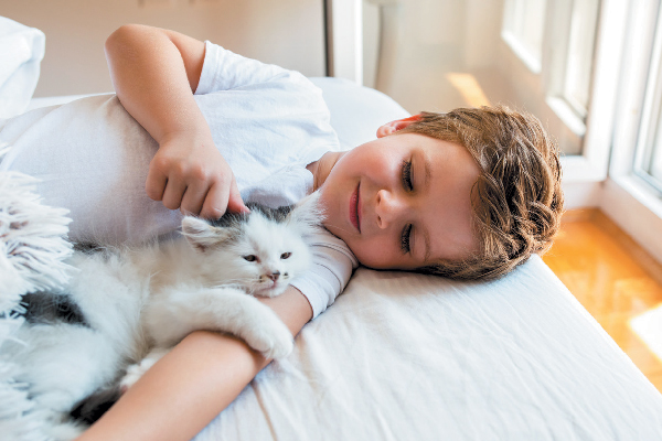 A small boy holding a cat.