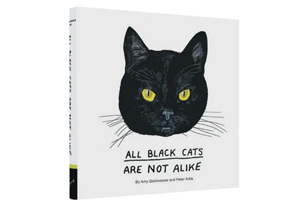 All Black Cats Are Not Alike by Amy Goldwasser. Photography © Chronicle Books.