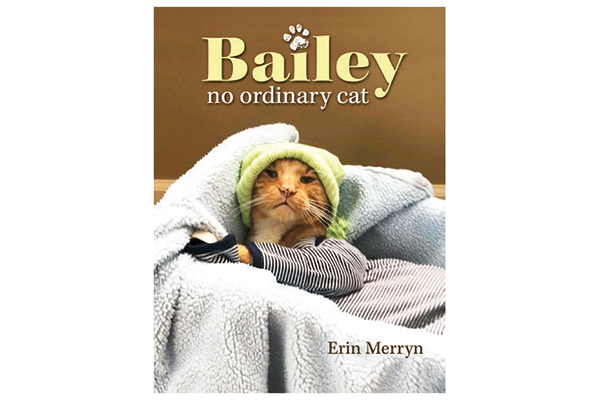 Read Bailey's new book!