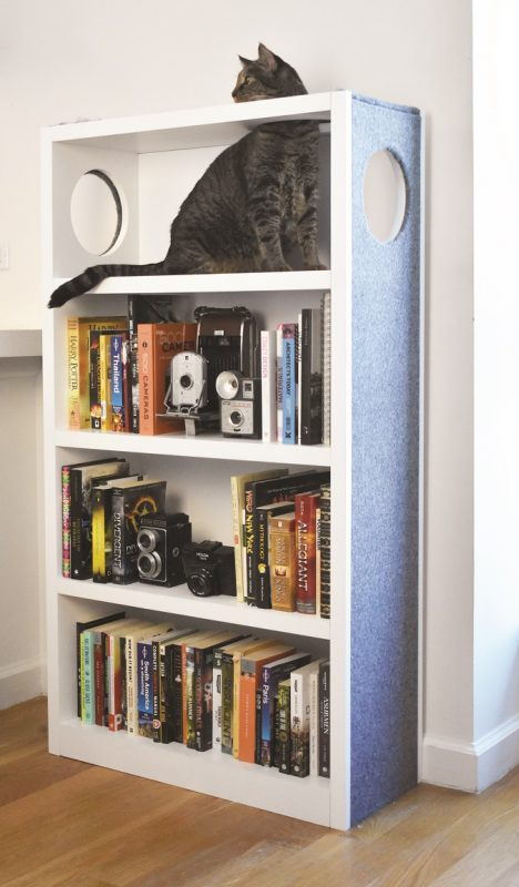 PurrShelf cat furniture