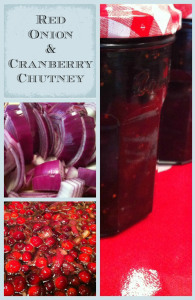 Red Onion and Cranberry Chutney