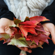All Things Autumn #AutumnLove