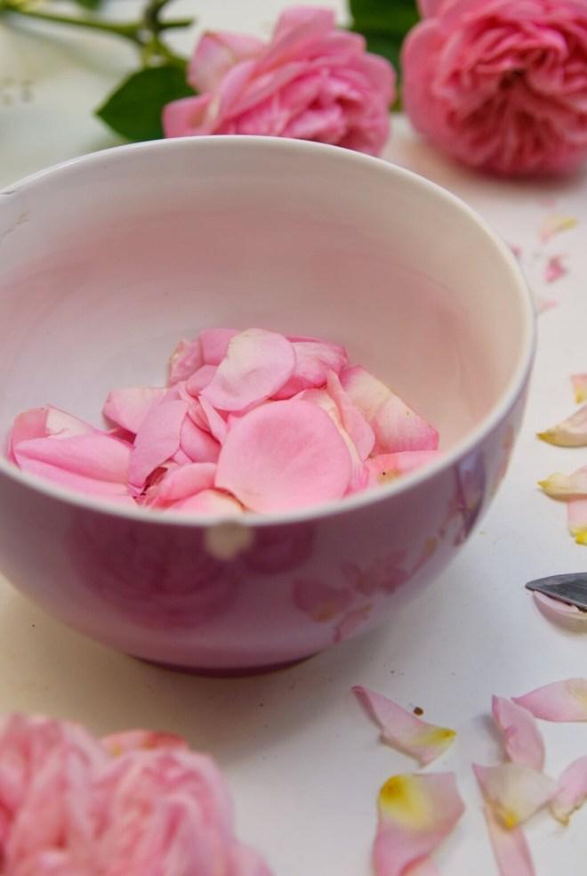 Rosenblüten in Schüssel