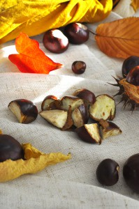 1.-pieces-of-chestnuts