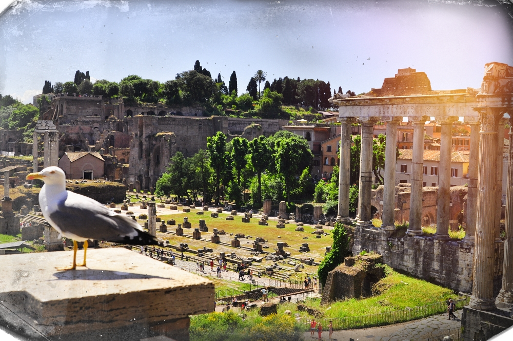 Forum romanum Rom City Trip