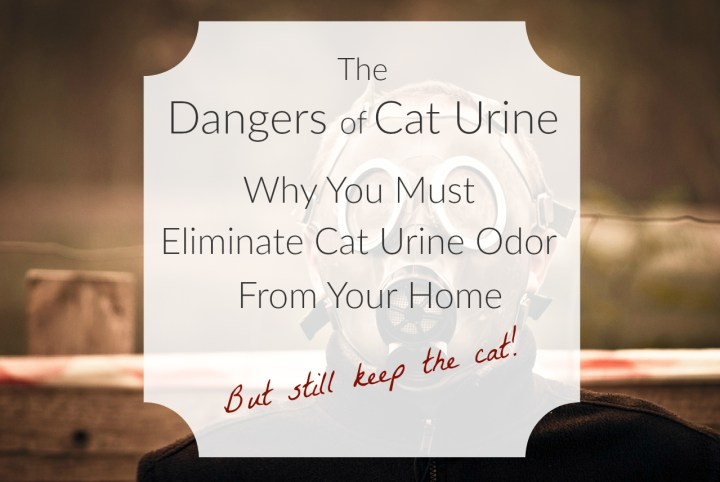 Man In Gas Mask To Avoid Cat Urine Odor