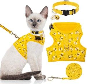 Bingpet Cat Harness